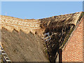 SK6412 : Ridge thatch renewal (2) by Alan Murray-Rust