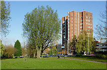 SO9098 : Park land by Ring Road St Andrew's,  Wolverhampton by Roger  Kidd