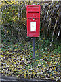 TG2303 : Caistor Hall Norwich Road Postbox by Adrian Cable