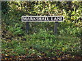 TG2303 : Markshall Lane sign by Adrian Cable