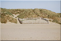 TQ9618 : Dune restoration, Camber Sands by N Chadwick
