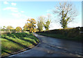TM2692 : Low Road, Topcroft by Adrian Cable