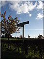 TM2691 : Roadsign on Barford/Denton Road by Adrian Cable