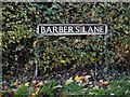TM2891 : Barber's Lane sign by Adrian Cable