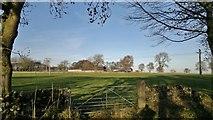 SK1862 : Grassland by Rake Lane by Chris Morgan