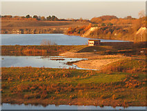 SP9314 : Winter sunlight gives a warm glow to College Lake, near Tring by Chris Reynolds