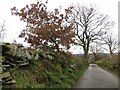 SD7512 : Brookfold Lane, Harwood by Philip Platt