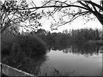 SU9778 : The Thames near Black Potts bridge by Eirian Evans