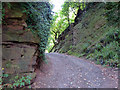 SO7974 : Severn Way Footpath cutting through Blackstone Rock by Mat Fascione
