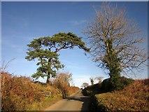 SX3257 : Road to Carrawcawn Cross by Derek Harper