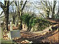 SP0588 : Key Hill Cemetery, Hockley: steps between the upper and lower areas by Robin Stott