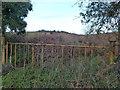 TF6714 : Abandoned quarry near Blackborough End by Richard Humphrey