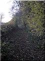 SP9848 : Footpath by Astey Wood by Philip Jeffrey