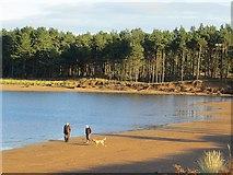 NT6378 : Beach, Tyne Estuary by Richard Webb