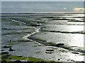 SU6704 : Mud, Langstone Harbour by Robin Webster