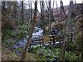SD6739 : Footbridge over Dean Brook by Karl and Ali