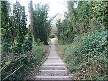 TQ7668 : Steps leading towards Chatham from the Great Lines by Chris Whippet