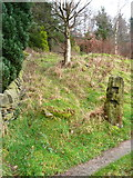 SE0023 : Hebden Royd FP91 where it cuts across the bend in New Lane by Humphrey Bolton