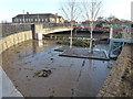 TF4609 : Mud from the flood near Freedom Bridge, Wisbech by Richard Humphrey