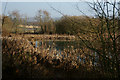 TQ3052 : Spynes Mere Nature Reserve, Merstham by Peter Trimming