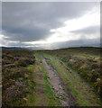 SJ1267 : Offa's Dyke path crossing Penycloddiau hill fort by Andy Waddington