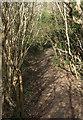 SS8577 : Public footpath at the western end of Cwm y Gaer by eswales