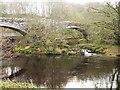 NY5563 : Lanercost Bridge by Oliver Dixon