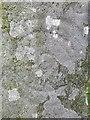 NO2739 : Detail, Keillor symbol stone by Richard Webb