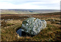 NY9629 : Gritstone boulder on Monk's Moor by Andy Waddington