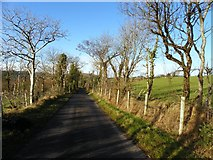 H3568 : Tattysallagh Road, Cornavarrow by Kenneth  Allen