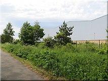 NZ2954 : Warehouse, Washington by Richard Webb