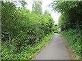 NZ2854 : Old railway, Vigo Wood by Richard Webb