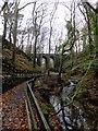 SC4178 : Bridge in Groudle Glen by Richard Hoare