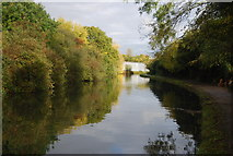 TQ1683 : Grand Union Canal - Paddington Branch by N Chadwick