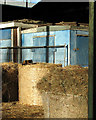TM4391 : Tortoiseshell cat on straw bale by Evelyn Simak