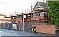 J3775 : Palmerston housing site, Belfast (5 in 2013) by Albert Bridge