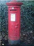 NY3704 : Post box, Lake Road, Ambleside by Graham Robson