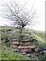 NY9175 : Gunnerton Nick lime kiln - arch (2) by Mike Quinn