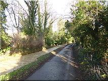 TF0117 : Church Lane by Bob Harvey