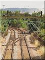 TQ6475 : Tilbury Railport Junction by Stephen Craven