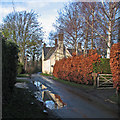 TL3044 : Abington Pigotts: reflections in Church Lane by John Sutton