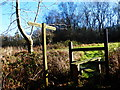 SU9314 : Looking across stile on top of Waltham Down by Shazz