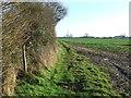 TM2661 : Footpath Junction by Keith Evans