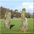 NR8297 : Nether Largie Standing Stones  - stones L and K by Patrick Mackie