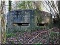 SN6311 : West side of Pillbox on Argoed Road by Nigel Davies