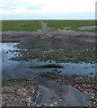 TF5053 : Track crossing a tidal creek by Mat Fascione