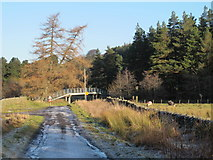 NY8450 : Ford and footbridge on the River East Allen (4) by Mike Quinn