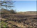 SE5420 : Near Grange Farm by Alan Murray-Rust