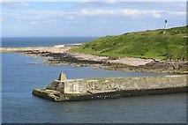 NJ9605 : Old South Breakwater, Aberdeen Harbour by Richard Webb