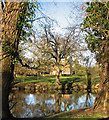 TL3166 : Conington Hall reflected by John Sutton